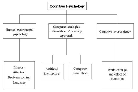 cognitive psychology theory process and methodology books cognitive approach simply psychology