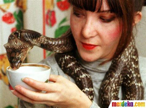 film manusia ular penghuni hutan foto ketika binatang liar dan buas akrab dengan manusia
