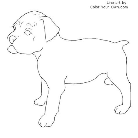 free dog boxers coloring pages
