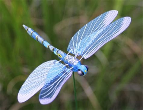 windy wings dragonfly garden stakes set of 6 only 23 99