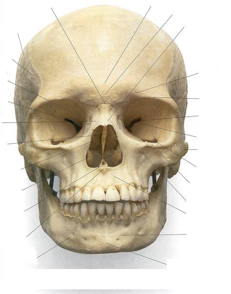 Skull Mask Practicum Journey 2011 Skull On