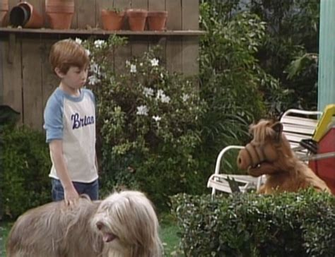 you ain t nothin but a hound alf reviews you ain t nothin but a hound season 2 episode 19