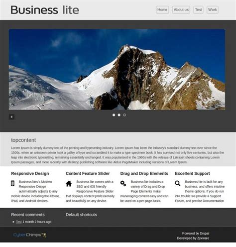 slideshow themes drupal 11 best 11 more of the best free bootstrap drupal themes