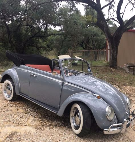 vintage volkswagen convertible 1964 vw bug convertible vintage motor for sale