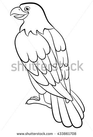 cute eagle coloring pages coloring pages wild birds cute eagle stock vector