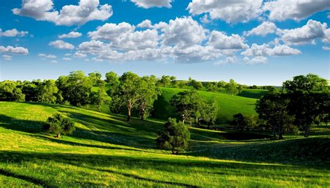 green valley scenery nature landscape photo trees blue sky