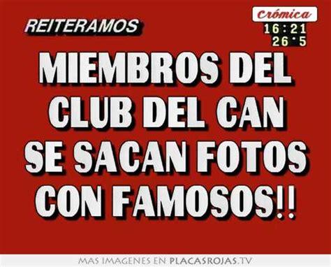 imagenes placas rojas miembros del club del can se sacan fotos con famosos