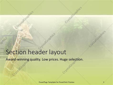 powerpoint templates zoo free powerpoint template zoo image collections powerpoint