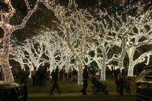 pedernales electric lights lights spectacular way out west
