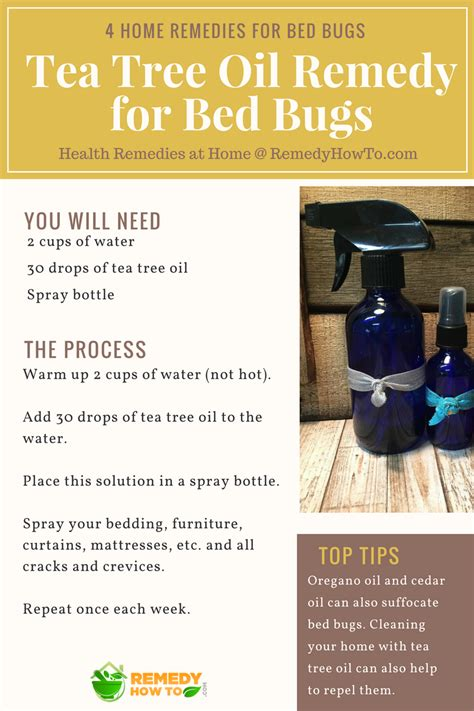 tea tree oil for bed bugs 4 home remedies for bed bugs health remedies at home