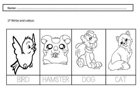 printable animal worksheet for preschoolers pets worksheets for preschoolers pet animals worksheet