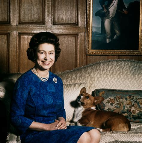 queen elizabeth ii corgis 8 things you didn t know about queen victoria and queen