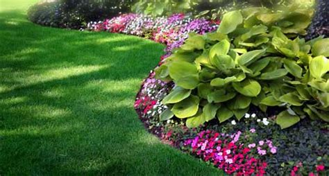 a to z landscaping why do i need landscaping mike s inland coastal