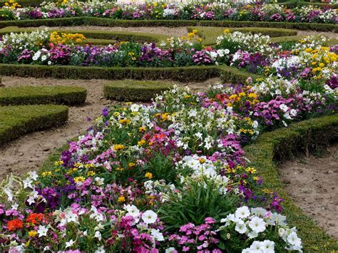 Gardens Of Flowers Flowers For Flower Flowers Garden Wallpapers