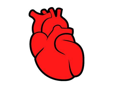 imagenes de corazones del cuerpo humano dibujo de el coraz 243 n pintado por en dibujos net el d 237 a 25
