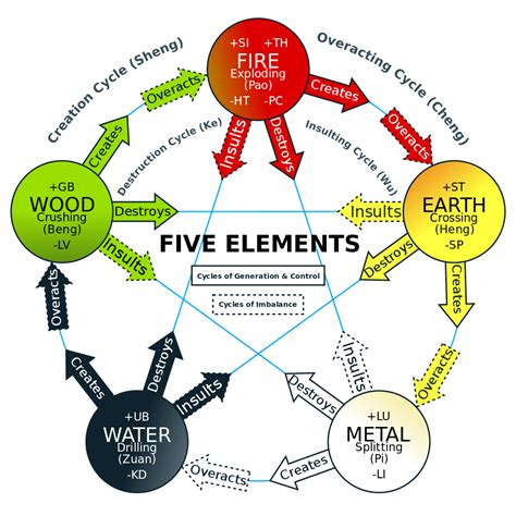 energy pattern of an element 5 element constellations a body oriented health and