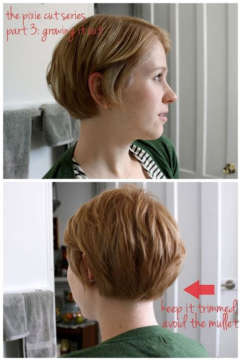 best 25 pixie cut back ideas on pixie haircut