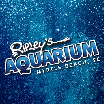 ripley s glass bottom boat what s trending in myrtlebeach tourism news for july 28