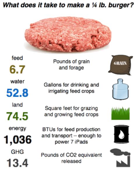 how much does it take to build a house serious wonder artificial meat our future diet