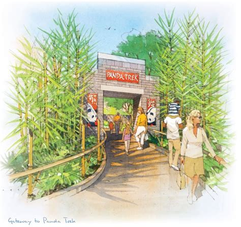 aquarium design san diego best 25 zoo tycoon 2 ideas on pinterest les sims 5
