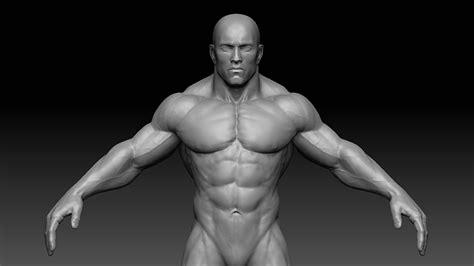 muscular man 31401 3d model muscular male body vr ar low poly obj fbx ztl