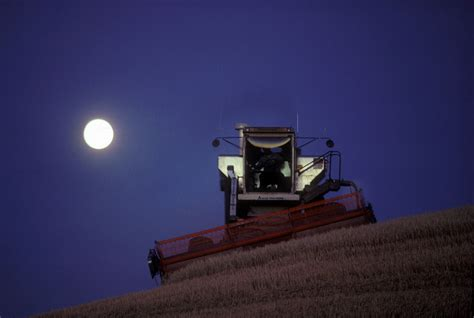 Northen Light by Full Moon Harvest Palouse Commerce Industry Phil