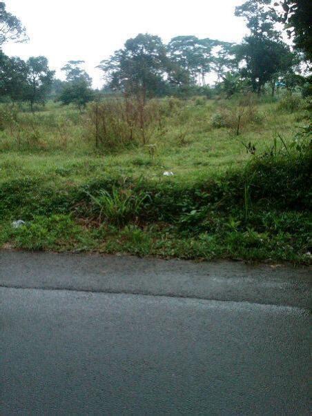 Jual Rumah Di Bilabong Parung tanah dijual di jual tanah di jabon parung bogor