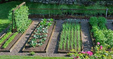 5 Actionable Tips On Starting A Vegetable Garden Best Vegetables For Home Garden