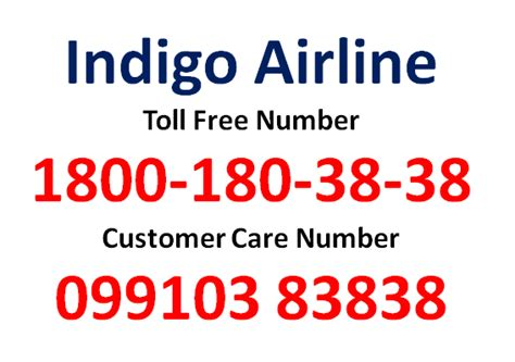 aliexpress customer care number indigo customer care indigo airlines toll free number and