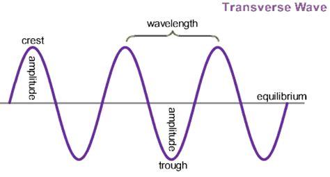 labelled diagram of a transverse wave physicslab wave fundamentals