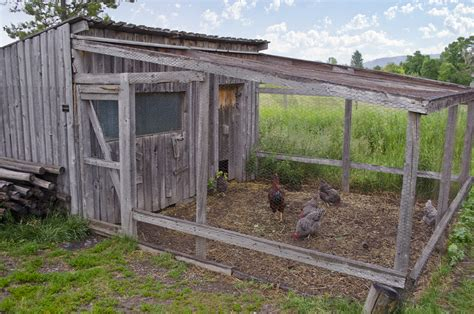 Rabbit Hutch Run Combo File Chicken Coop Tinsley Living Farm Museum Of The