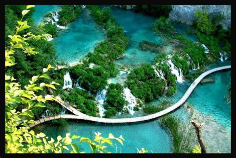 gambar foto video pemandangan alam terindah tercantik di dunia pemandangan bunga anggrek www imgkid com the image kid