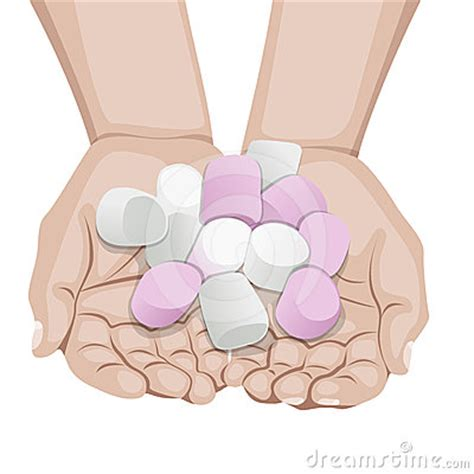 marshmallow clipart marshmallow clip images search
