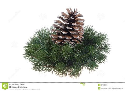 christmas decoration wreath and fir cone stock image