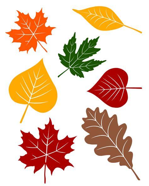 printable fall leaves fall leaves printable from no time for flash cards com