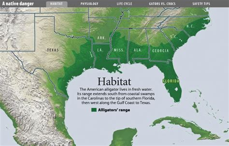 alligators in texas map alligator habitat map