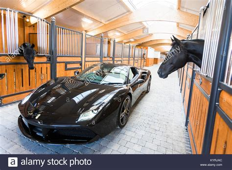 Black Horse Ferrari by Ferrari Horse Stock Photos Ferrari Horse Stock Images