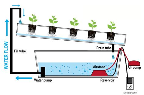 what time does the light rail start running types of hydroponics systems a complete guide the