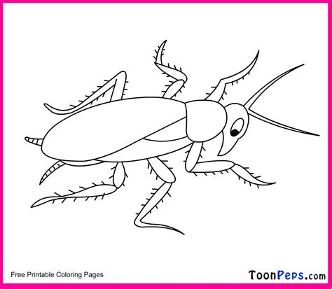 cockroach printable coloring pages