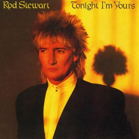 About Damn Time Rod Stewart Are Officially Divorced by Where Does He Get Those Wonderful Toys The Analog Kid