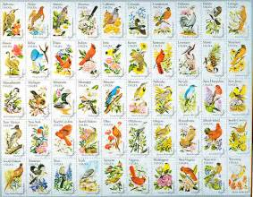 united states map state flowers 50 state birds flowers flickr photo