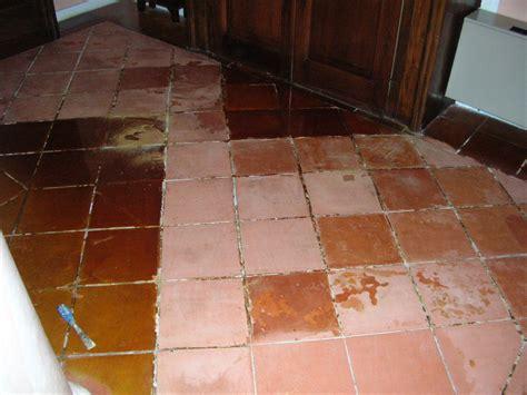 pulizia pavimenti in cotto pulizia pavimento in cotto www nodaritrattamenti