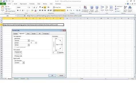 excel 2007 format cell text wrap excel text in cell wrap excel 2010 modifying columns
