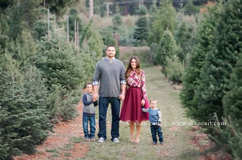 christmas tree farms in sacramento tag archive for quot apple hill quot shan cait photography sacramento el dorado folsom
