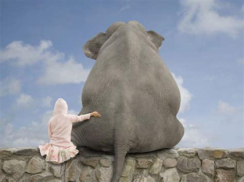 cadenas vélo test el elefante y las cadenas mentales reflexi 243 n ley de la