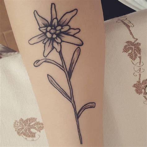 edelweiss tattoo best 25 edelweiss ideas on bloom