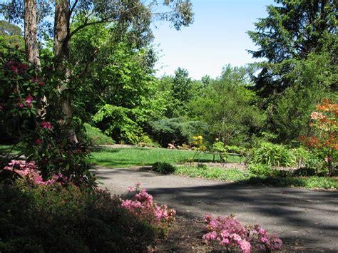 botanic gardens mt lofty botanic gardens trevor s travels