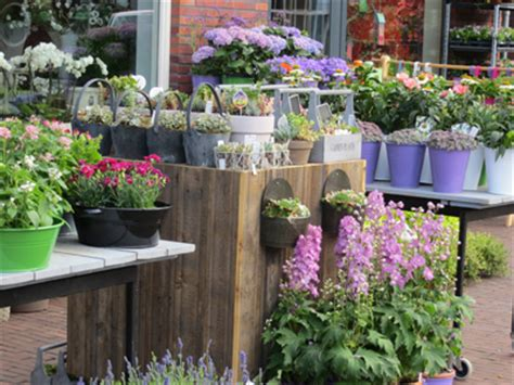 bloemen bezorgen enkhuizen bij bloem en plant bloem en plant