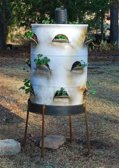 Plastic Barrel Strawberry Planter by Pin By Williams On Garden