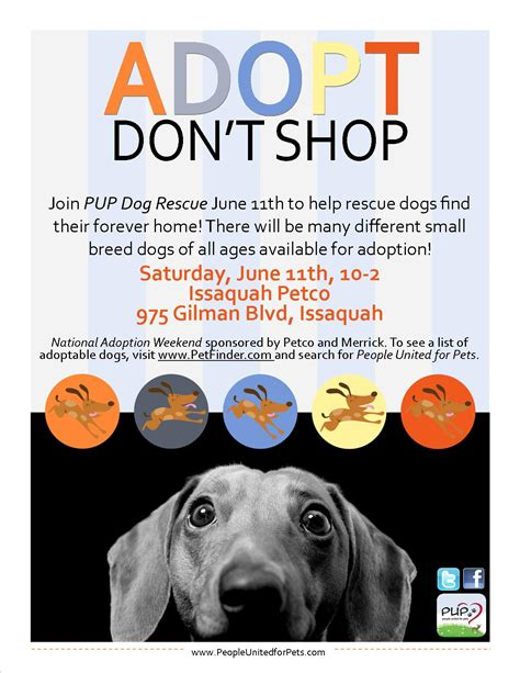 adoption flyer template pup rescue flyers portfolio fears
